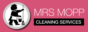 Mrs Mopp Cleaning Services (UK) Ltd